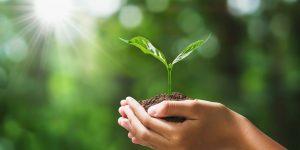 Abimóvel lança plataforma de diagnóstico de maturidade sustentável