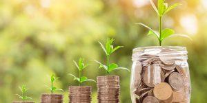 Especialista define quatro eixos fundamentais para a sobrevivência dos negócios