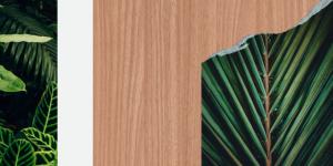 Impress Decor lança padrões da coleção Arredores